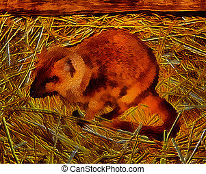3D Image of Yellow Mongoose called Red Meerkat - 3D Image of...