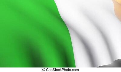 3D Irish Flag