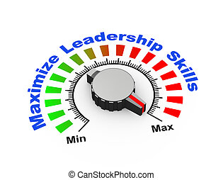 3d knob - maximize leadership skills