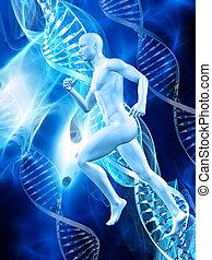 3D male figure on medical DNA background