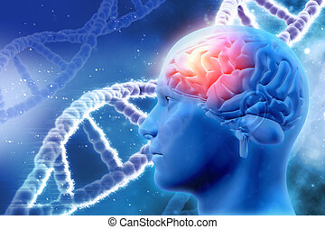3D medical background with brain and DNA strands - 3D...