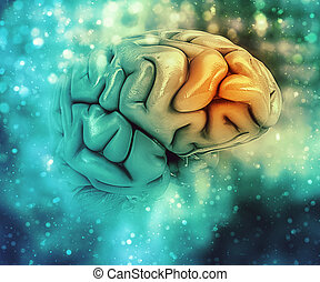 3D medical background with brain
