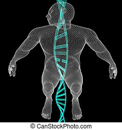 3D medical background with DNA strands and human. 3d render. On a black background.