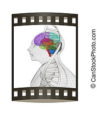 3D medical background with human, brain and DNA strands. 3d render. Film strip.