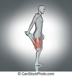 3D medical figure doing leg stretch