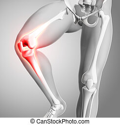 3d medical figure with close up of knee