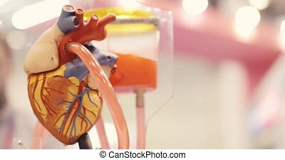 3d model layout of human heart pumping blood from dropper in science exhibition.