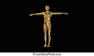 3D model of man body in gold