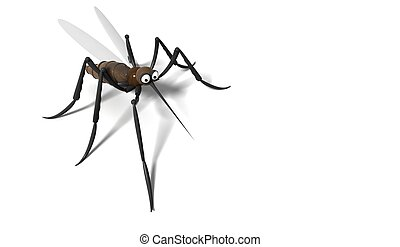 3D mosquito on white background