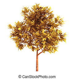 3d Orange tree on a white background