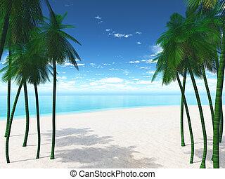 3D palm trees on a beach