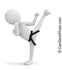 3d, pequeño, gente, -, karate, fighter.