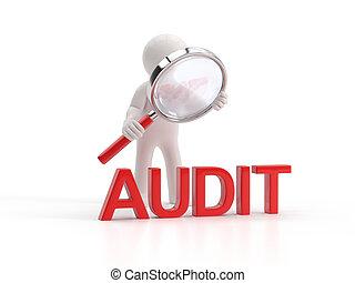 3d, pequeño, gente, -, lupe, auditoría