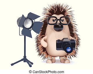 3d Photographer hedgehog