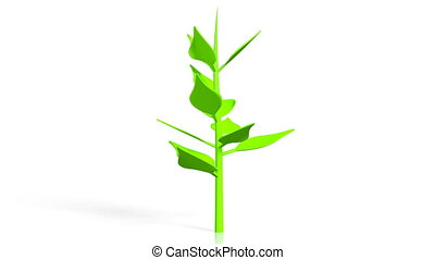 3D plant, white background
