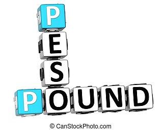 3D Pound Peso Crossword