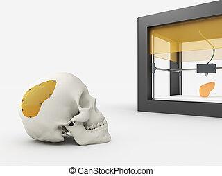 3d printed cranium - 3d printing human body. 3d printed...