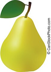 3d realistic green pear isolated on white background. Vector illustration.