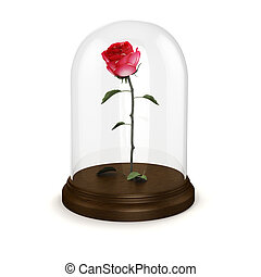 3d red rose in a glass dome