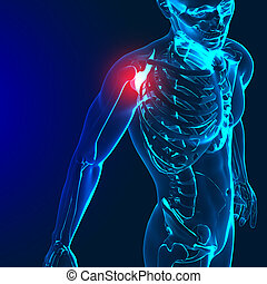 3d render of a medical image with painful shoulder,elbow and spine highlighted