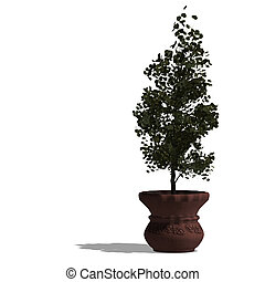 3d render of a planted tree with shadow and clipping path...
