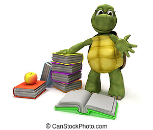 Tortoise reading a book