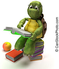 Tortoise reading a book - 3D Render of a Tortoise reading a...