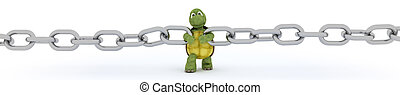tortoise with a chain