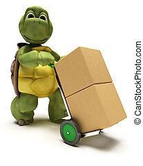 Tortoise with boxes for shipping