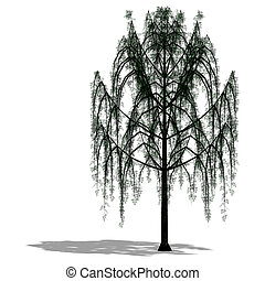 3D Render of a Tree with shadow and clipping path over white