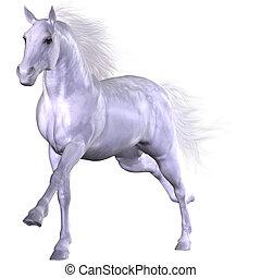 Beautiful Horse