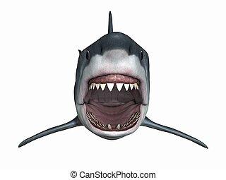 3D Render of an Great White Shark