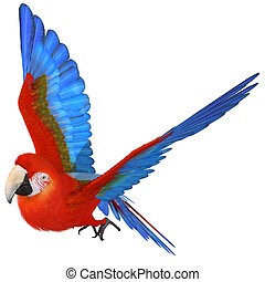 Macaw - 3D Render of an Macaw