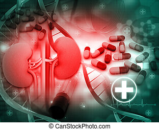 3d render of Human kidney and medicines