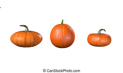 3d render of pumpkin on white background