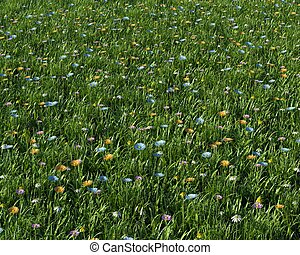 spring flowers in a meadow - 3D render of spring flowers in...