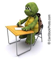 3D render of tortoise sat at school desk