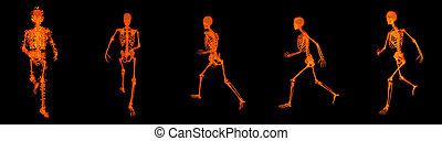 3d render walking fire skeleton by X-rays in red