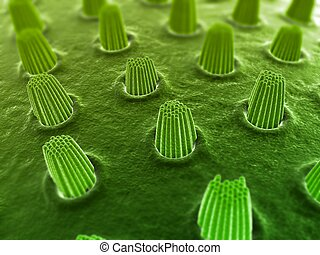 3d rendered close up of ear cells