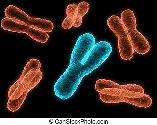 chromosome - 3d rendered close up of some isolated ...