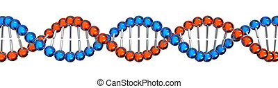 DNA strand - 3d rendered DNA strand illustration on white...