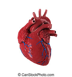 3d rendered human heart. - 3d rendered human heart isolated...
