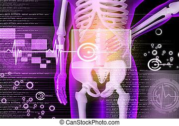 3d rendered illustration - backache