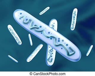 3D rendered Illustration of a Lactobacillus Bacteria