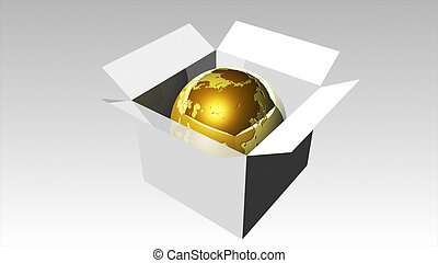 3d Rendered illustration of a Globe in a Box 3