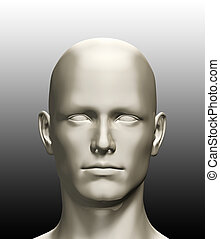 3d rendered illustration of a human head