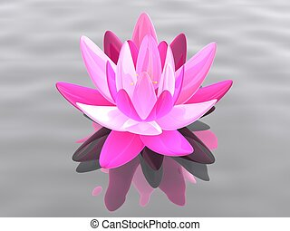 lotus flower - 3d rendered illustration of a lotus flower on...