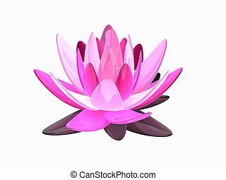 lotus flower - 3d rendered illustration of an isolated...