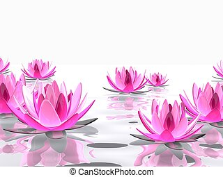 lotus flower - 3d rendered illustration of elegant lotus ...