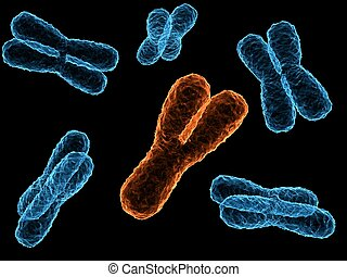 x-chromosome - 3d rendered illustration of isolated x-...
